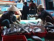 Mercado de productos acuáticos en Centro de Vietnam se recupera de incidente ambiental