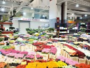 Asistencia francesa a proyecto de ampliación de mercado vietnamita