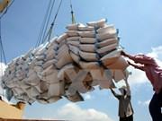Disminuyen exportaciones vietnamitas de arroz en primer trimestre de 2017