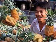 Vietnam ingresa mil millones de dólares por exportaciones hortofrutícolas