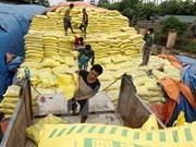 Vietnam estudiará la aplicación de medidas de protección sobre fertilizantes importados