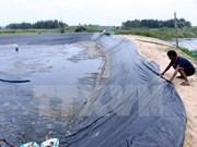 Vietnam planea elevar superficie de arenal destinado a cría de camarones