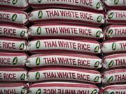 Tailandia continúa con la venta de su reserva de arroz