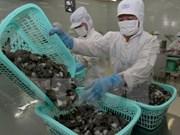 Japón, mayor importador de camarones vietnamitas