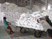 Filipinas importará 250 mil toneladas de arroz en junio
