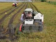 Vietnam y Japón intercambian experiencias en aplicación de alta tecnología en agricultura