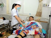 Comparten en Vietnam experiencias en prevención de enfermedades causadas por arbovirus