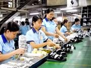 Crecen exportaciones de provincia vietnamita a Estados Unidos