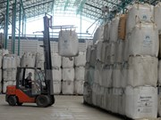 Tailandia planea vender en 2017 toda su reserva de arroz