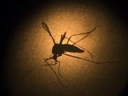 Vietnam redobla acciones contra el dengue
