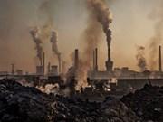 Vietnam comprometido a reducir emisión de gases de efecto invernadero