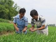 Banco Mundial despliega proyecto de asistencia a Vietnam en desarrollo rural