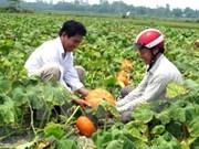 Hanoi moviliza fondos para construcción de nuevas zonas rurales
