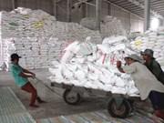 Vietnam exporta 2,56 millones de toneladas de arroz en seis meses