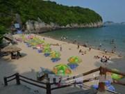 Hai Phong atrae a más de tres millones de turistas en primer semestre de 2017