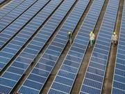 Acwa Power invierte en proyectos de energía renovable en Vietnam
