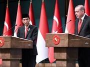 Indonesia y Turquía comienzan las negociaciones de CEPA