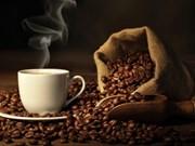 Valor de exportación de anacardo y café de Vietnam registra alto crecimiento