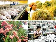 Localidades vietnamitas orientan tareas socioeconómicaspara segundo semestre de 2017