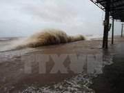 Quang Ninh suspende operación de barcos turísticos debido a tifón Talas