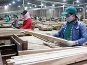 Ciudad Ho Chi Minh registra avances en sector industrial en primer semestre de 2017
