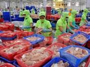 Vietnam reporta notable crecimiento de envíos de productos acuícolas a Países Bajos