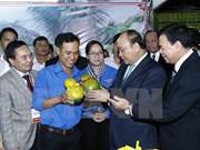 Reiteran apoyo consecuente a jóvenes emprendedores vietnamitas