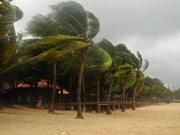  Vietnam se prepara ante llegada de tifón Sonca
