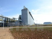 Dak Nong ingresa 50 millones de dólares por exportación de aluminio