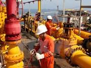 Industria gasífera de Vietnam apuesta por ahorro energético y desarrollo sostenible