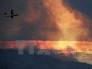 Malasia dispuesta a ayudar a Indonesia a combatir incendios forestales