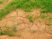 Vietnam implementará 24 proyectos en respuesta al cambio climático en Delta del Mekong