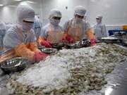 Reino Unido- mayor importador de camarón vietnamita en Unión Europea