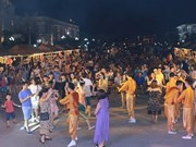 Efectúan en polo turístico vietnamita Festival Cultural de India