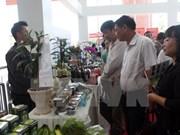 Vietnam impulsa desarrollo agrícola basado en los avances tecnológicos