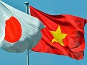 Voluntarios de Cruz Roja de Japón y Vietnam plantan manglares