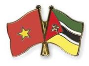 Ciudad Ho Chi Minh impulsa cooperación con Mozambique en sector judicial