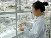 Vietnam y UNESCO firman acuerdo para establecer centros de matemáticas y física