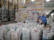 Filipinas importará 293 mil toneladas de arroz de Vietnam