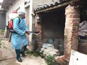 Registran disminución de casos de dengue en Vietnam