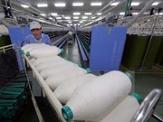 Sector de confecciones textiles de Vietnam busca oportunidades de inversión en Armenia