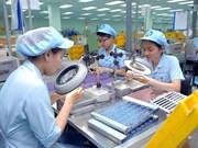 Vietnam: Unos 102 mil trabajadores registrados en empresas creadas en agosto