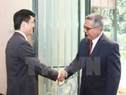 Vietnam y Cuba realizan cuarta consulta política