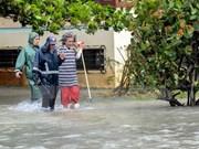 Vietnam expresa solidaridad con Cuba ante paso del huracán Irma