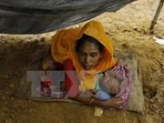 Australia ofrece asistencia humanitaria a Rohingyas en Myanmar