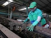 Empresas japonesas desean invertir en tratamiento ambiental en Vietnam