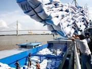 Vietnam prevé aumento de valor de exportación de arroz
