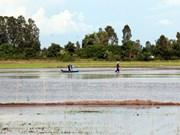 A debate en Vietnam proyecto de desarrollo integral del Delta del río Mekong