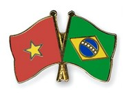 Presentan Grupo parlamentario de amistad Brasil-Vietnam para período 2017-2019