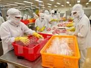 Urgen a exportadores vietnamitas de mariscos a luchar contra la pesca ilegal